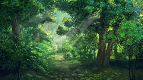 anime forest wallpapers  images wallpaperboat