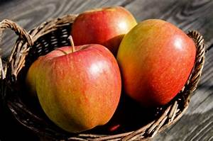 Apfelbaum Hochstamm Kaufen : apfelbaum braeburn kaufen ihr online pflanzenversand ~ Orissabook.com Haus und Dekorationen