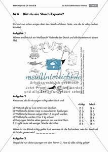 Sich Selbst Finden Test : thema wei storch passende berschriften f r informationstexte finden test zum ~ Buech-reservation.com Haus und Dekorationen