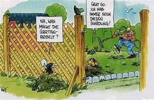 Wühlmäuse Im Garten : w hlm use im garten seite 3 forum auf ~ Lizthompson.info Haus und Dekorationen
