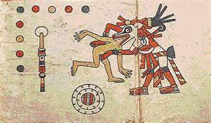 Aztec Warrior Codex