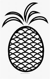 Pineapple Coloring Fruit Transparent Kindpng sketch template
