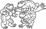 Coloring Frog Frogs Pages Printable Animal sketch template