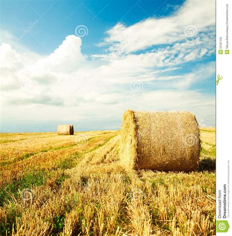 Beautiful Farm Scenery With Haystack Stock Image Image