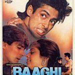 top  bollywood films   super hit  hindi