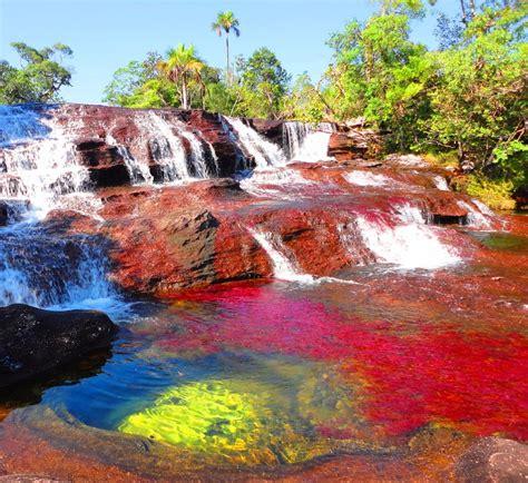 river colors ca 241 o cristales the quot river of five colors quot colombia