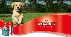 Hundefutter Mera Dog : erstklassiges hundefutter meradog es lebe der hund ~ A.2002-acura-tl-radio.info Haus und Dekorationen