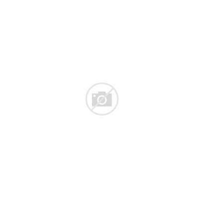 Clipart Horse Outline Jumping Transparent Warszawianka