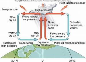 Global Patterns of Wind and Precipitaton