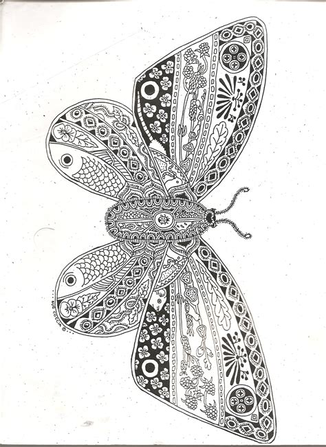 butterflymoth zentangle zentangle drawings coloring
