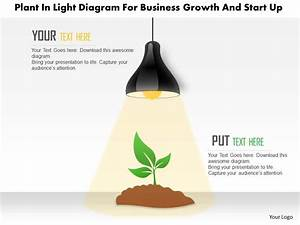 0115 Plant In Light Diagram For Business Growth And Start