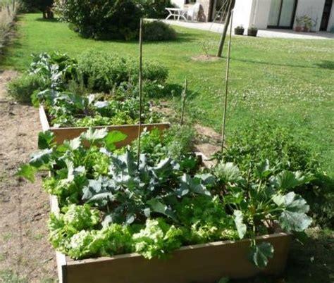 que planter dans potager potager en carr 233 s le magazine gamm vert