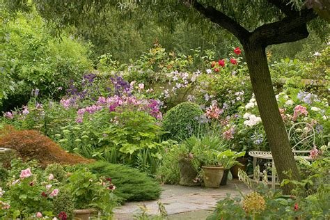 Old English Country Garden Gallery