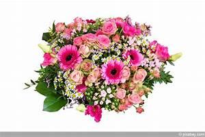 Bilder Von Blumenstrauß : blumen binden lernen grundlagen anleitung f r einen blumenstrau ~ Buech-reservation.com Haus und Dekorationen