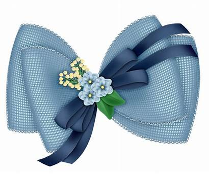 Transparent Flowers Bow Clipart Azul Tubes Flower