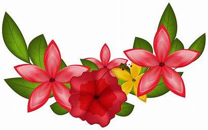 Clipart Floral Exotic Decoration Transparent Yopriceville Decorative