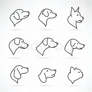 Vector image of an dog head on white background | Stock ...