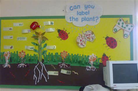 plants classroom display photo photo gallery sparklebox