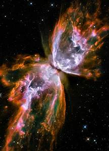 Butterfly Nebula   Colors of Gods creations   Pinterest