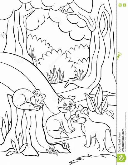 Coloring Pages Fox Animals Wild Squirrel Forest