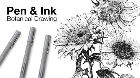 ink botanical drawing hildurko art blog shop