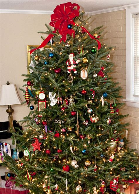 Decorate For Christmas With Mississippi Trees  Mississippi State University Extension Service