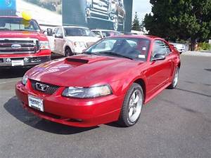 2001 Ford Mustang GT Coupe | Alex's Blog