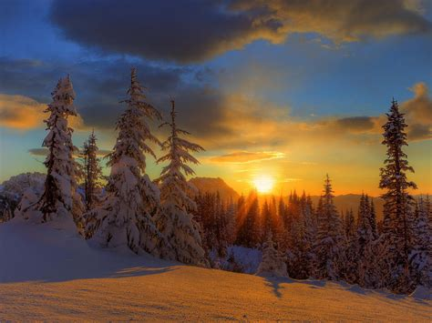Beautiful Winter Wallpaper Hd by Beautiful Winter Pictures Hd Wallpaper Pic