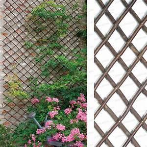 Treillis Pour Plantes Grimpantes : treillage extensible en osier 1m x 2m treillages support ~ Premium-room.com Idées de Décoration