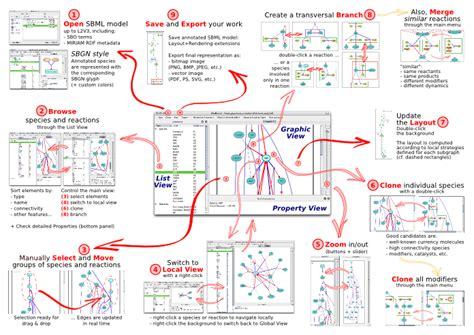 opinions on metabolic pathway