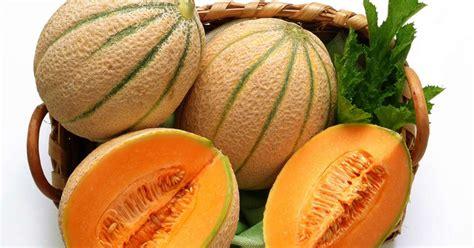 la cuisine africaine les melons et pastèques histoire variétés et cuisine