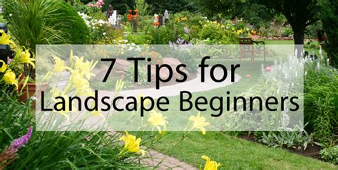 7 Tips For Landscaping Beginners  Landscape Edging Blog