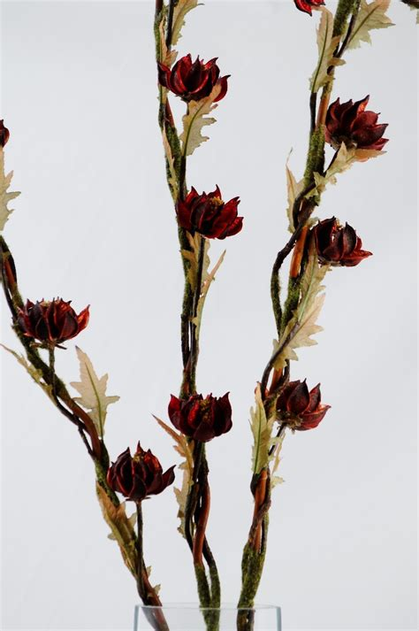 si鑒e social bordeaux floare exotica uscata culoare bordeaux