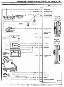 Few Tpi Engine  Ecm Harness Questions