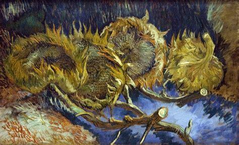 Filevier Uitgebloeide Zonnebloemen Wikimedia Commons
