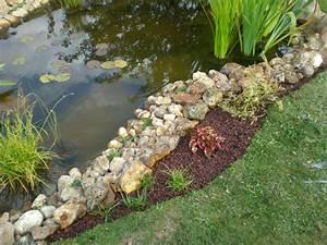 Plante Pour Bassin Extérieur : fosse etanche boutures de reves le jardin de sophie ~ Premium-room.com Idées de Décoration