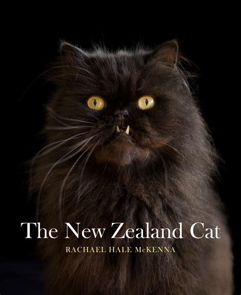The New Zealand Cat  Rachael Hale Mckenna 9781877505744