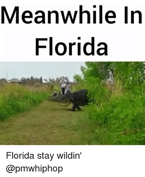 Florida Meme 25 Best Memes About Meanwhile In Florida Meanwhile In