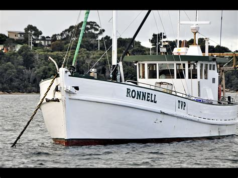 Boat Bookshelf Nz by Timber Boats For Sale In Australia Free Row Boat