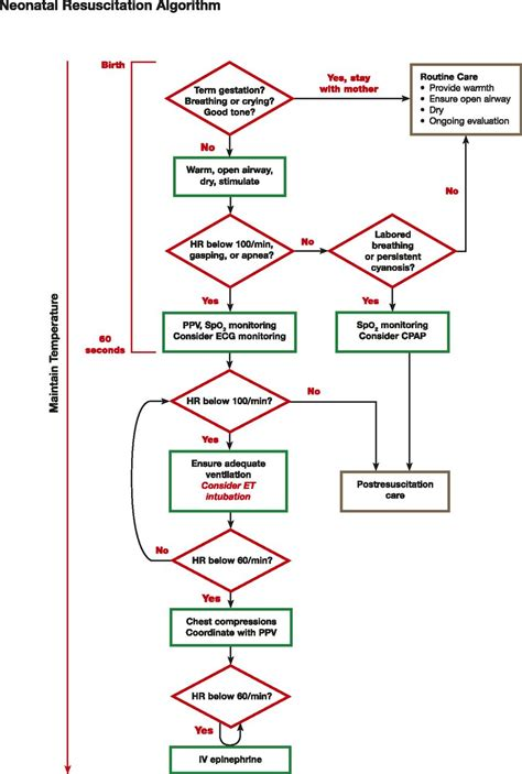 part  neonatal resuscitation consensus  science