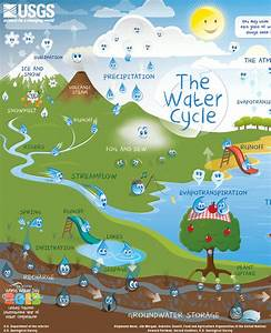 The Water Cycle For Kids