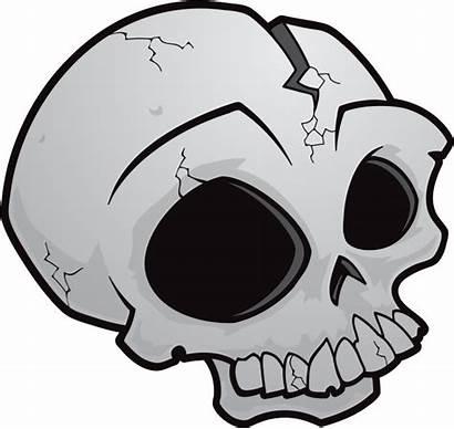 Skull Transparent Background Skulls Outline Cartoon Brain