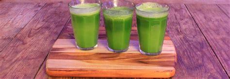 juicer leafy greens juicers pick cold press articles