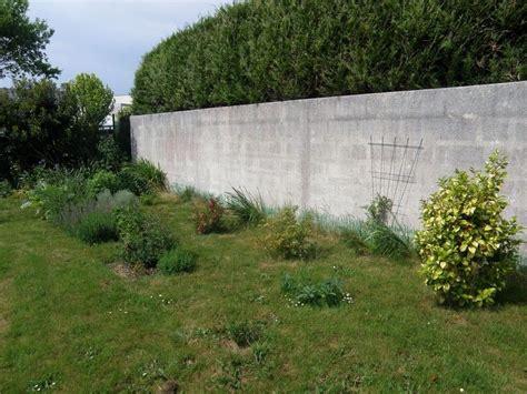 Le Mur Au Fond Du Jardin (5)