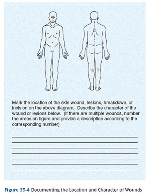 Wound Assessment Diagram by 23skin Integrity And Wound Healing