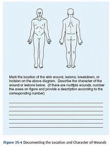 Arm Diagram Skin Assessment Form Diagram Base Website