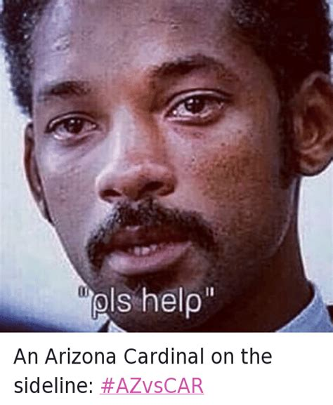 Pls Memes - 25 best memes about arizona cardinals will smith will smith please help nfc chionship