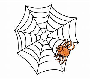 How to Draw How to Draw a Spider Web with Spider in a Few ...
