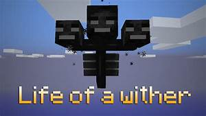 Life of a Wither (ItsJerryAndHarry) - YouTube