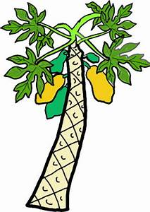 Cartoon Image PAPAYA TREE - ClipArt Best